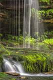 USA  Pennsylvania  Benton Waterfall in Ricketts Glen State Park