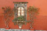 Mexico  San Miguel de Allende Scenic of window and plants