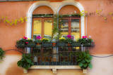 Italy  Venice  Window Boxes with Flowers