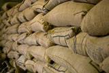 El Salvador  Central America Ataco Coffee  El Carmen Estate