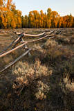 Rail fence across sage brush in Grand Teton National Park