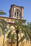 Spain  Granada The bell tower of the Granada Cathedral
