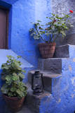 Peru  Arequipa Geraniums on Steps at Santa Catalina Monastery