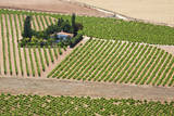 Spain  Granada Crops of the Andalusia valley