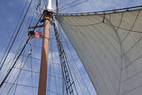 Star of India Sailing Ship  San Diego Maritime Museum  California  USA