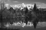 Schwabacher's Landing  Grand Tetons  Grand Teton NP  Wyoming  USA