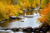 Yampa River in autumn