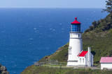 The Heceta Head lighthouse near Florence  Oregon  USA