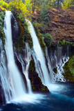 Burney Falls  McArthur-Burney Falls Memorial SP  California  USA