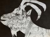 Diurnes - La chèvre aux gravois