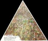 Expo 83 - Galerie Art Contemporain Limoges