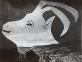 Diurnes - La chèvre à l'horizon