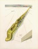 DC Enfer 14 - Blasphemateurs Reproduction pour collectionneurs par Salvador Dalí