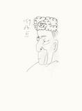 Le Goût du Bonheur 28 Sérigraphie par Pablo Picasso