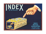 Index Lemon Label