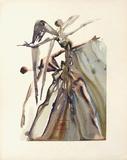 Dc Purgatoire 04 - Les NégIIgents Reproduction pour collectionneurs par Salvador Dalí