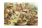 Snake Charmers and Cobras