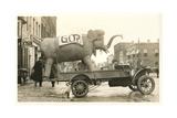 Gop Elephant on Truck