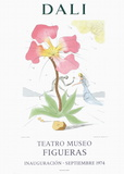 Teatro Museo Figueras 3 Reproduction pour collectionneurs par Salvador Dalí