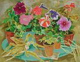 Les pots de fleurs II