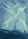 Fleur Céleste