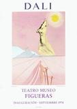 Teatro Museo Figueras 6