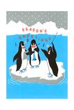 Season's Greetings  Penguin Band
