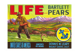 Life Pear Label
