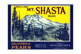 Mt Shasta Pear Label