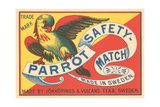Match Box with Parrot