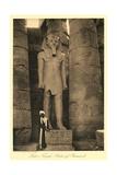 Statue of Ramses II  Luxor
