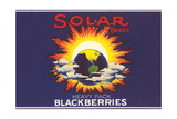 Solar Blackberry Label
