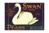 Swan Pear Label