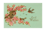 Best Wishes  Bird House