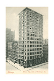 Reliance Building  Chicago