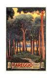Travel Poster for Viareggio