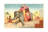 Running Elephant