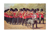 Irish Guards with Mascot