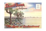 Desert Scenes  Postcard Folder