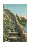 Old Path  Capri