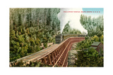 Dollarhide Trestle and Train