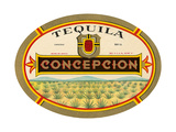 Tequila Concepcion