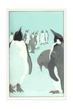 King Penguines Looking Up