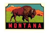 Montana Decal