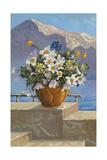 Flower Pot on Seaside Patio
