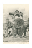 Royal Elephant with Howdah  India