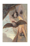 Bats in Cave