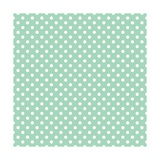 White Polka Dots on a Retro Vintage Mint Green Background