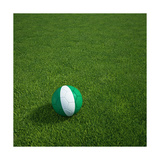 Nigerian Soccerball Lying on Grass