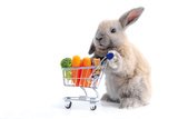Cute Bunny Shopping for His Favorite Snacks with Shopping Cart